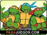 Turtle Memory
